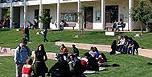 美国大学综合排名