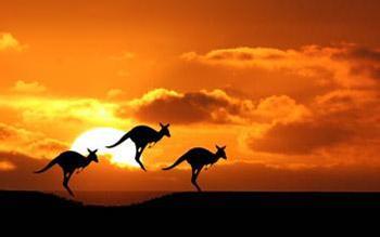 澳洲留学费用要多少
